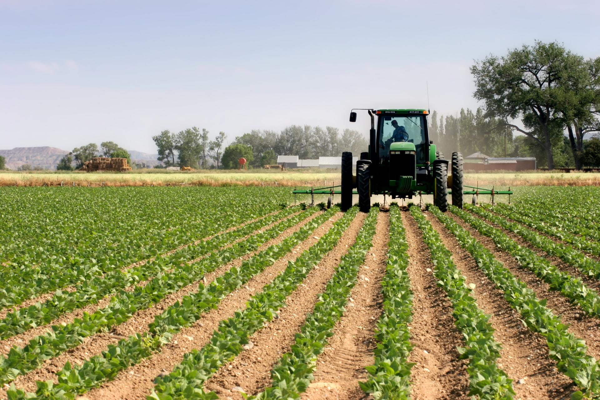 Сельское хозяйство: перевод текстов